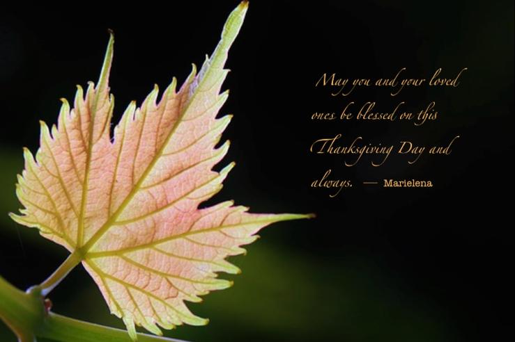 Thanksgiving Day 2014 - Copyright © Marielena Montesino de Stuart. All rights reserved