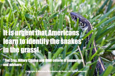 THE SNAKES IN THE GRASS - Ted Cruz, Hillary Clinton and their coterie of supporters and advisers. Copyright © Marielena Montesino de Stuart. All rights reserved.2016-07-21 at 12.03.34 PM